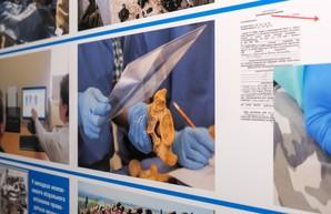 В Днепре появился Гуманитарный тренинговый центр судебно-медицинской идентификации