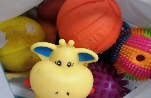Подари Другу игрушку: В Днепре запустили необычный флешмоб