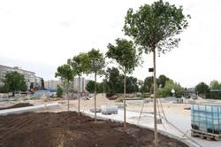 Сквер Прибрежный в Днепре откроют ко Дню города – Филатов (ФОТО)
