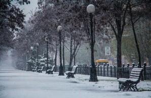 На Днепропетровщине зима длилась всего 6 дней – Гидрометцентр